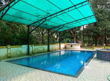 Casa Candolina Goa (Service Apartment in Goa for rent) - Pool